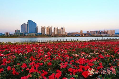 花园城市,绿色遂宁(钟敏 摄))主图.jpg