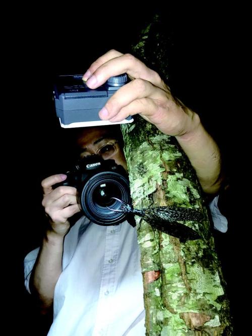 作者在夜晚拍摄树上的越中巨齿蛉.jpg