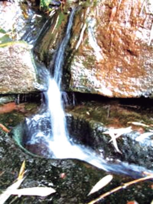 巖石間的山泉.jpg