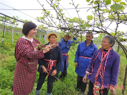 """27(網)向珊:從大學""""園丁""""到農場園丁的蛻變配圖    向珊在為當地果農講解獼猴桃種植知識.jpg"""