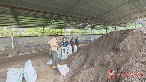 03(网)变废为宝,恩阳区+配图    工人正在将发酵后的有机肥装袋.jpg