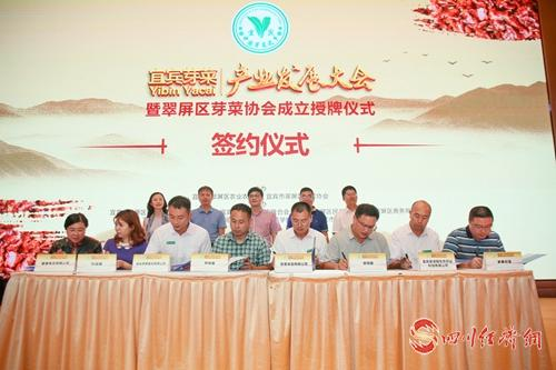 23(网)翠屏区芽菜协会成立配图    图二是 签约仪式.jpg