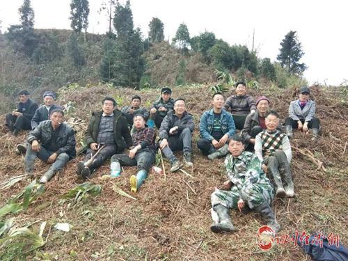 图3:庞书记带领村民种植三月竹 .jpg