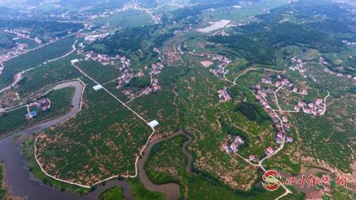 23(网)首届世界柠檬产业发展大会将于9配图    安岳柠海.jpeg
