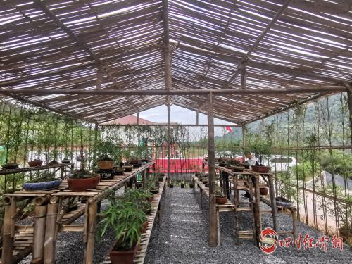 全竹元素的竹石盆景园.jpg