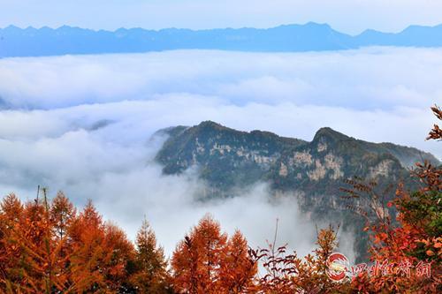 07(网)旺苍大峡谷列入2019年全国森林康养基地配图    旺苍大峡谷美景.png