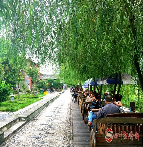 44(网)西充:治理有效 宜居乡村美景如画配图    双龙桥村3.jpg