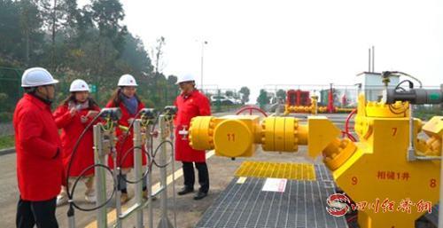作家采風團一行參觀中國氣藏型儲氣庫中注采能力最強的井——相儲1井.png
