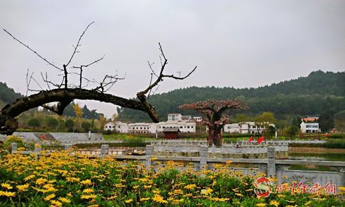26(网)西充:环境大提升 乡村大变样配图   桃文化博览园中的花庙子村.jpg