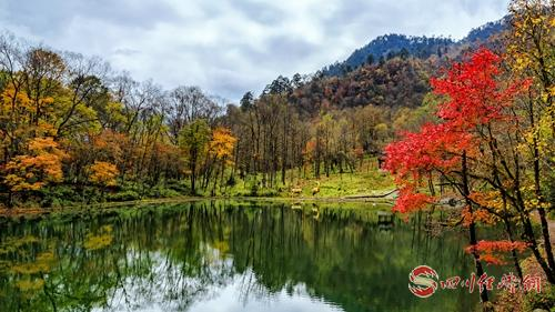 13(网,川经瞭望)红叶为媒 绿水为伴 这个秋天让你情定天全二郎山红叶节配图   配图:天全二郎山鹿池.jpg