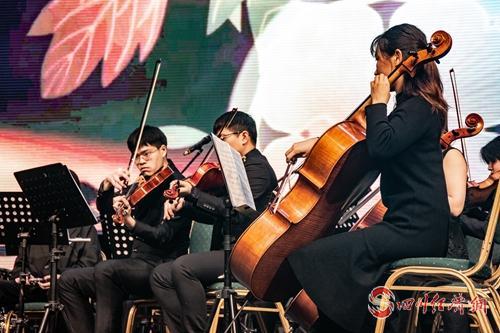 06(网,川经瞭望)音乐开启新年之门 雅安举行2020新年交响音乐会配图   配图:认真演奏.jpg