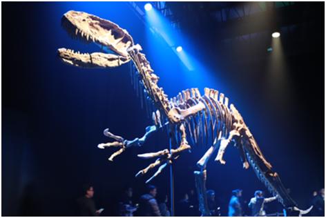 """06(6胡  網 0120 廣告部)""""侏羅紀""""搶鮮開展,恐龍世界探索之旅即將啟程配圖   活動現場2.png"""
