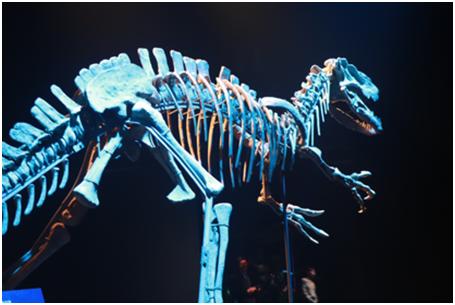 """06(6胡  網 0120 廣告部)""""侏羅紀""""搶鮮開展,恐龍世界探索之旅即將啟程配圖   活動現場3.png"""