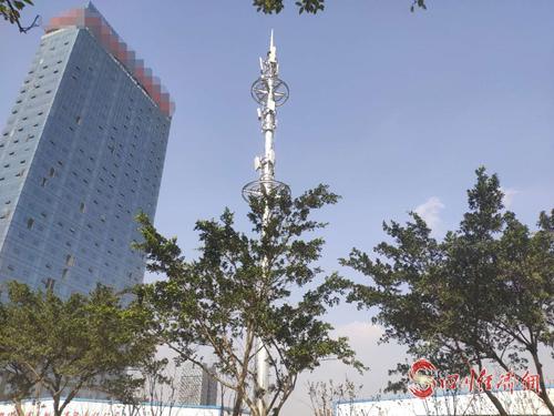15(网)   5G 网络建设.png