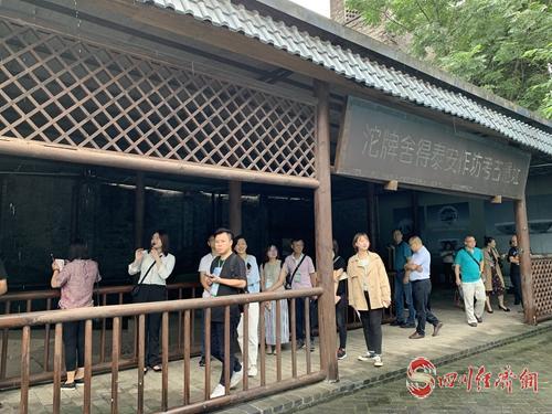 26(网)图片新闻配图    全国主流经济媒体代表们正在参观舍得泰安作坊考古遗址.jpg