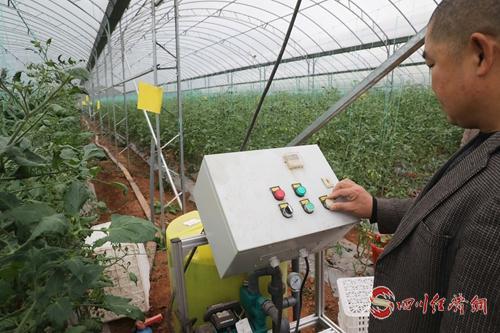 19(網)簡陽:綠色變革讓生態底色愈發亮麗配圖   一口吖吖高效農業生態園內,工人正在操作灌溉系統(謝明剛 攝).jpg
