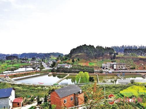 贫困村在甲鱼养殖基地.jpg