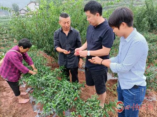 图为张朝洪(左二)在基地和村干部探讨技术_副本.jpg